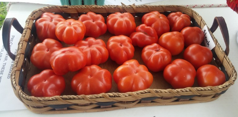 Old%20Large%20Red%20Tomatoes[1].jpg