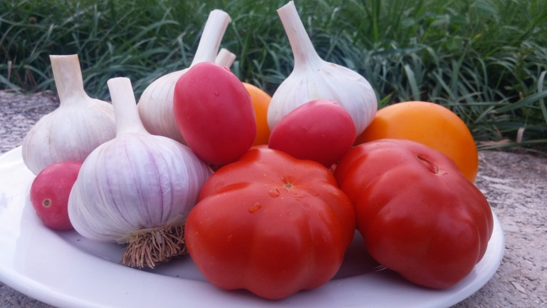 tomatoes%20and%20garlic[1].jpg